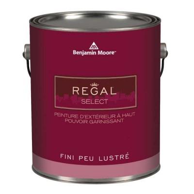 Peinture Régal extérieur  946 ml